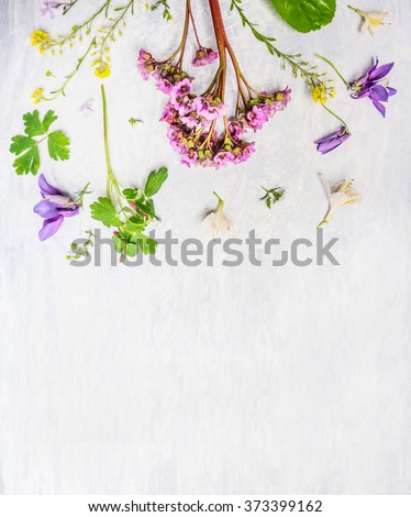Pink, lilac and yellow spring or summer garden  flowers and plants on light wooden background, top view, border