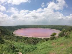 Pink Lonar Crater Buldhana Maharashtra