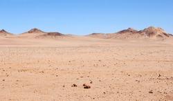 Pink Namib desert landscape, Namibia