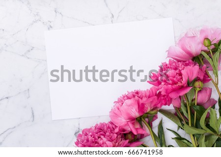Pink peonies on white marble background - Shutterstock ID 666741958