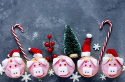 Pink pig cupcakes - homemade cupcakes decorated with cream cheese frosting and marshmallow shaped funny piggies, christmas and new year 2019 sweet treat for kids