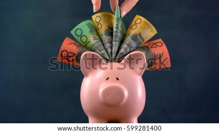 Pink Piggy bank money concept on dark blue background, stuffed with Australian cash, and female hand take one hundred dollar note.