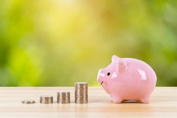 Pink piggy bank with coin stack steps with sunlight ray on green tree background