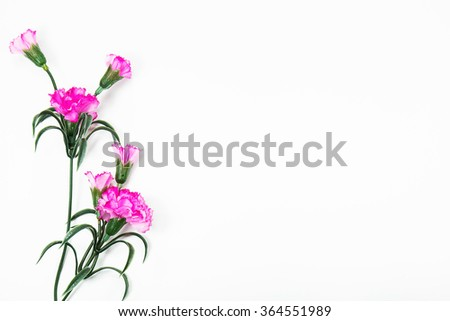 Pink plastic flowers on white background ez canvas pink plastic flowers on white background mightylinksfo