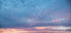pink purple and blue colored cloudscape with fleecy clouds, sunset background