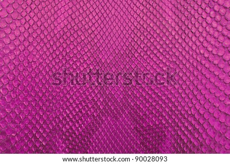 Pink python snake skin texture background.