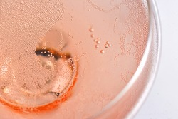 Pink Rose Champagne Glass With Bubbles