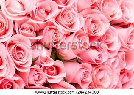 pink rose flower bouquet background