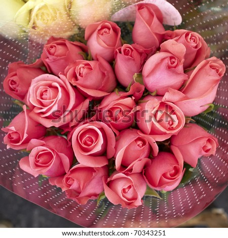 Flower Rose on Pink Rose Flowers Bouquet  Natural Background Stock Photo 70343251
