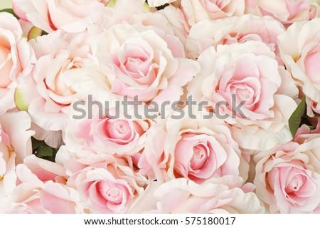 Vintage Rose Background Images And Stock Photos Avopixcom