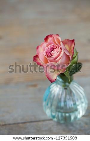 Pink rose in vase on wooden background