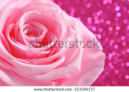 Pink rose on pink sparkle background