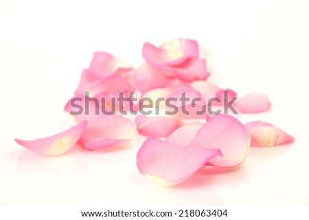 pink rose petals #218063404