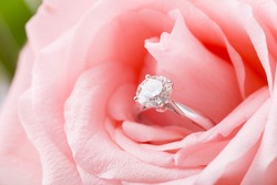 Pink Rose with diamond ring
