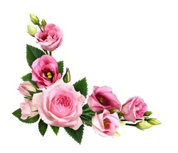 Pink roses and eustoma flowers and buds in a floral corner arrangement isolated on white background. Flat lay. Top view.