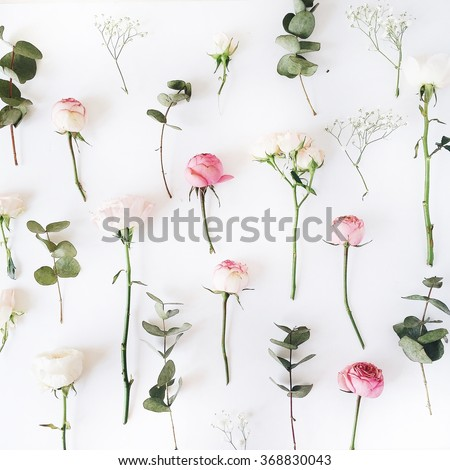 Pink roses on white background. Flat lay, top view