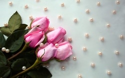 Pink roses with golden pearls