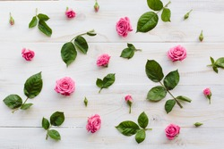 Pink roses with green leaves on wood background