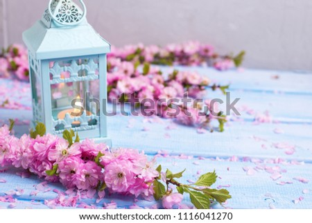 Pink  sakura flowers  and decorative lantern with candle on blue wooden planks. Selective focus. Place for text.