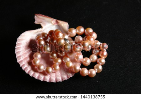 pink shell with pink pearls #1440138755