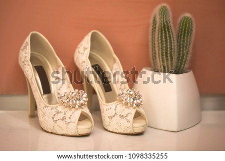 Pink shoes and wedding shoes next to cactus #1098335255