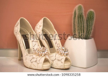 Pink shoes and wedding shoes next to cactus #1098335258