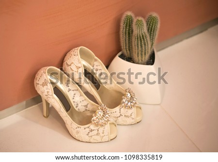 Pink shoes and wedding shoes next to cactus #1098335819