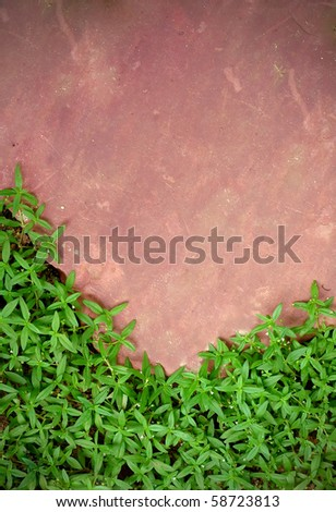 pink stone with green grass