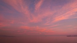 Pink sunset at the sea. Antitwilight. Thin, wispy cloud strands in the blue evening sky over the sea. Pink cirrus clouds over the calm sea at rosy sunset.