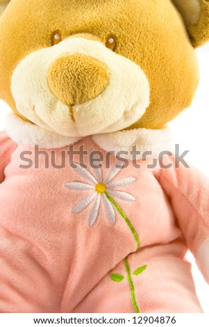 Pink teddy bear close up, isolated on white, with flower