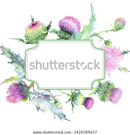 Pink thistle floral botanical flowers. Wild spring leaf wildflower isolated. Watercolor background illustration set. Watercolour drawing fashion aquarelle isolated. Frame border ornament square. #1426589657