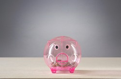 Pink transparent piggy bank with a few coins placed on the table behind gray background saving concept.