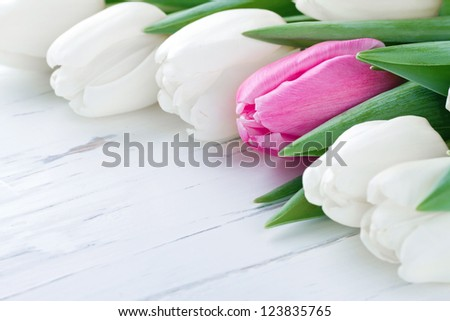 Pink tulip among white tulips on white wooden rustic table - One Of A Kind concept