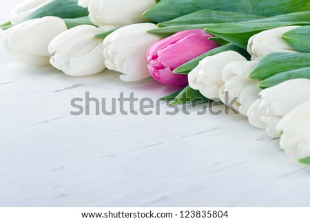 Pink tulip among white tulips on white wooden rustic table - Unique concept