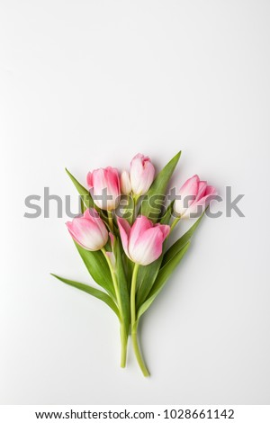 Pink tulip flowers bouquet on white background. Flat lay, top view. #1028661142