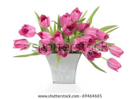 Pink tulip flowers in a distressed pewter  vase, isolated over white background.