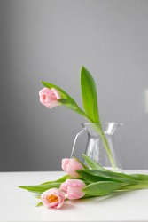 pink tulip in a glass vase stands on the table, tulips lie on the table, on a gray background, space for text, free space, floristry, florist, bouquets of tulips, bouquet, woman's hands, flowers
