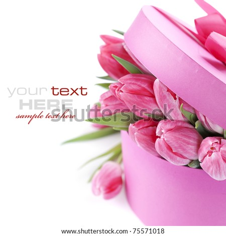 Pink tulips and gift box on a white background (with sample text)