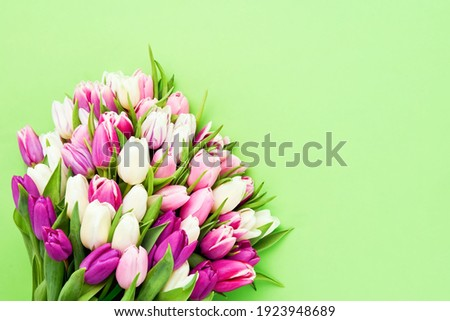 Pink tulips flowers bouquet on a bright green background. Valentine Day, Mothers day, Birthday celebration concept. Top view, copy space for text Stock fotó ©