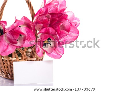 Pink tulips in a basket on a white background