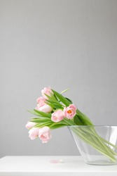 pink tulips in a large glass vase stand on the table, on a gray background, space for text, free space, floristry, florist, tulip bouquets, bouquet, valentine's day, international women's day,flowers