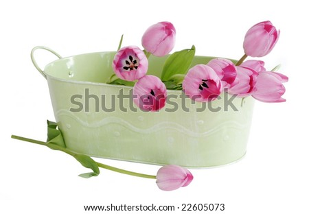 pink tulips in green tin container