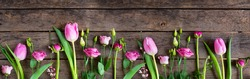 Pink tulips on old rustic wood. Fresh spring flowers decorated in a row for mothersday. Wide photography for a background with space for text. Top view, flat lay.