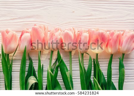 pink tulips on white rustic wooden background. spring top view of flowers in soft morning sunlight with space for text. hello spring. blogging concept