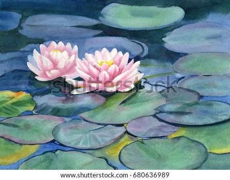 Pink Water Lilies with Colorful Pads.  Watercolor painting, art, blue, green yellow green lily pads and pink flowers