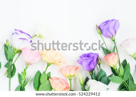 Pink White Orange And Violet Eustoma Fresh Flowers Border With Copy Space 524229412