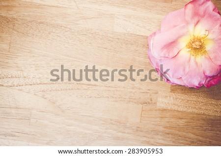 pink wilted rose blossom on a natural wood background