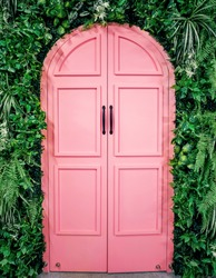 Pink wooden entrance door covered with fern and green climbing leaves.