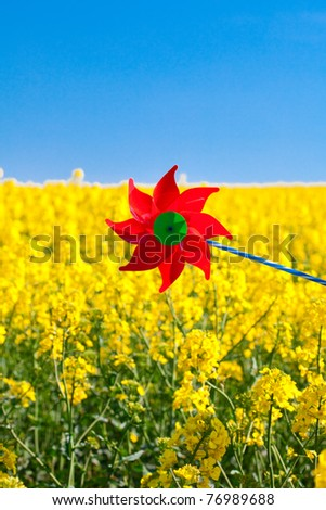 pinwheel  in a field of yellow rapeseed against the blue sky