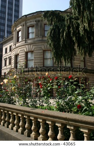 Pioneer Courthouse Roses - stock photo